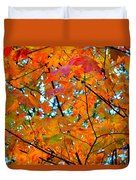 Fall Colors 2014-5 Duvet Cover