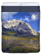 Fall Colors At Gunnison National Forest Duvet Cover