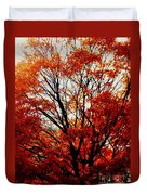 Fall Colors Cape May Nj Duvet Cover