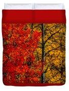 Fall Colors Dp Duvet Cover