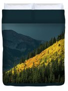 Fall Colors In Aspen Colorado Duvet Cover