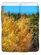 Fall Colors On The Colorado Aspen Trees Duvet Cover