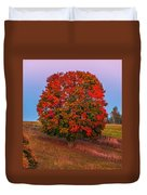 Fall Colors Over A Big Tree In Warmia In Poland During Twilight Hour Duvet Cover