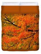 Fall Fiesta Duvet Cover