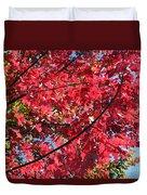 Fall In Illinois Duvet Cover