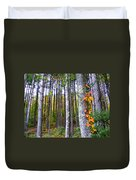 Fall Ivy In Pine Tree Forest Duvet Cover