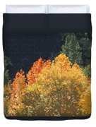 Fall Leave On The East Verde River Duvet Cover