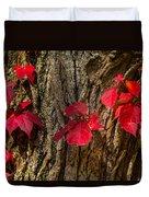 Fall Leaves Against Tree Trunk Duvet Cover
