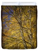 Fall Leaves And Trees In West Michigan No171 Duvet Cover