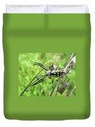 Fall Meadow Spider - Argiope Aurantia Duvet Cover