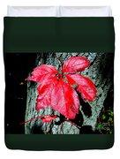 Fall Red Leaf Duvet Cover