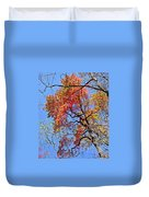 Fall Trees 2 Of Wnc Duvet Cover