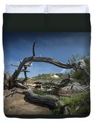 Fallen Dead Torrey Pine Trunk At Torrey Pines State Natural Reserve Duvet Cover