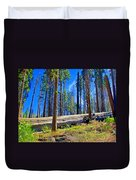 Fallen Sequoia In Mariposa Grove In Yosemite National Park-california Duvet Cover