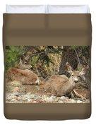 Family Nap Duvet Cover
