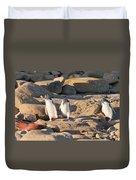 Family Of Nz Yellow-eyed Penguin Or Hoiho On Shore Duvet Cover