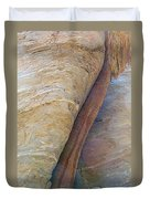 Fan Palm Forced Into A Slant By Rock In Andreas Canyon-ca Duvet Cover