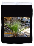 Fan Palm Leaf Over Andreas Creek In Indian Canyons-ca Duvet Cover