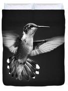 Fantail Hummingbird Duvet Cover