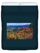 Farview Point Duvet Cover