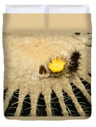 Fascinating Cactus Bloom - Soft And Fragile Among The Thorns Duvet Cover