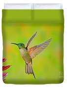 Fawn-breasted Brilliant Hummingbird Duvet Cover