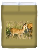 Fawn In Big Meadows Duvet Cover