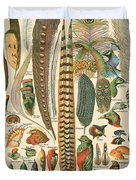 Feather Plumes-a Duvet Cover