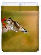 Feeding Anna's Hummingbird Duvet Cover
