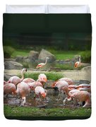 Feeding Frenzy Duvet Cover
