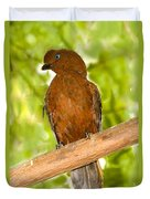 Female Andean Cock-of-the-rock Duvet Cover