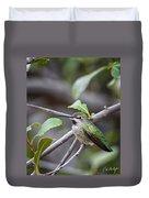 Female Anna's Hummingbird Duvet Cover
