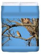 Female Bluebird Duvet Cover