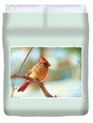 Female Cardinal - Digital Paint IIi Duvet Cover