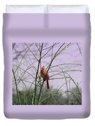Female Cardinal In Willow Duvet Cover