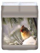 Female Cardinal Nestled In Snow Duvet Cover