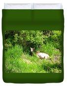 Female Deer Resting Duvet Cover