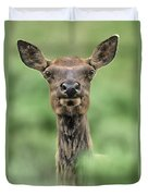Female Elk Portrait Yellowstone National Park Wyoming Duvet Cover