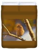Female Housefinch Duvet Cover