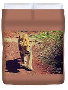 Female Lion Walking. Ngorongoro In Tanzania Duvet Cover