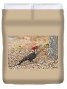 Female Pileated Woodpecker Duvet Cover