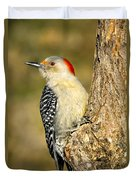 Female Red-bellied Woodpecker Duvet Cover