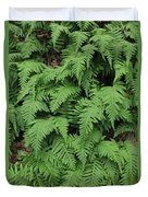 D3b6333-ferns In Sonoma 2  Duvet Cover