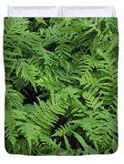 D3b6327-ferns In Sonoma Duvet Cover