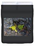 Ferns In Volcanic Rock Duvet Cover
