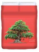 Ficus Bonsai Duvet Cover