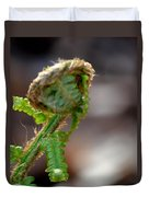 Fiddlehead 2 Duvet Cover