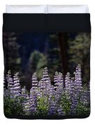 Field Of Summer Wildflowers Backlit Lupine  Duvet Cover