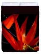Fiery Red Bird Of Paradise Duvet Cover