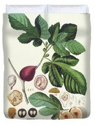 Fig Engraved By Johann Jakob Haid  Duvet Cover